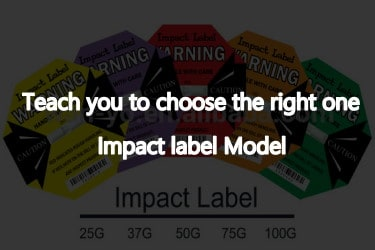 Instruct you to choose the model of impact indicator