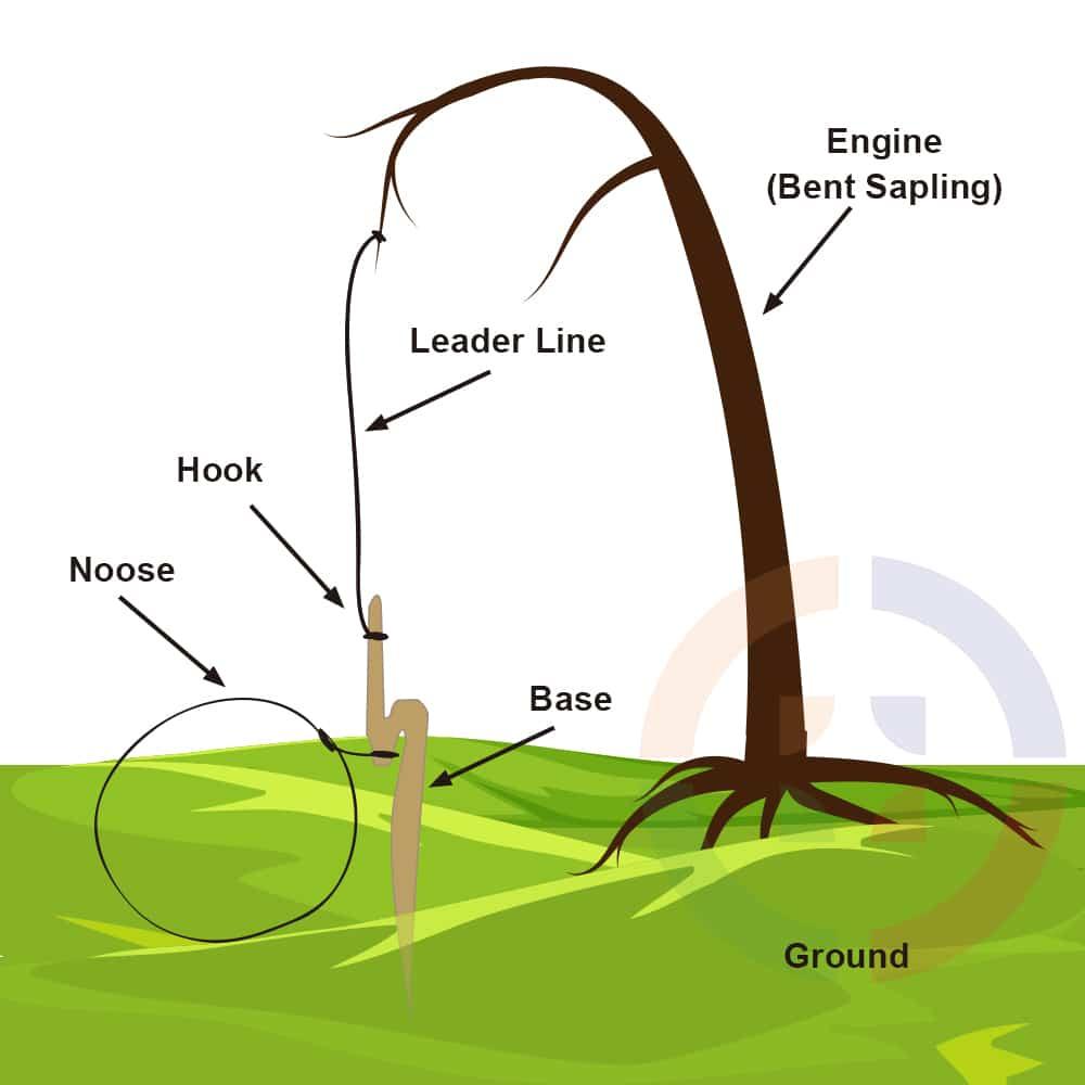snare-diagram